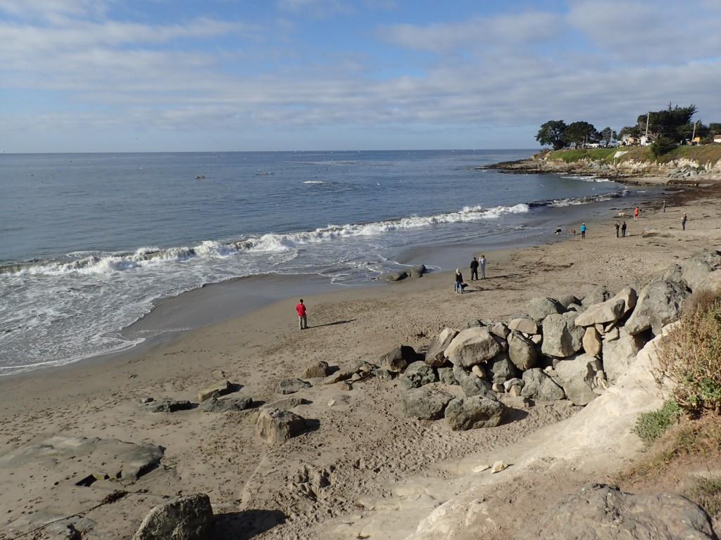 Mitchell's Cove in Santa Cruz, CA. 16 September 2015 © Allison J. Gong