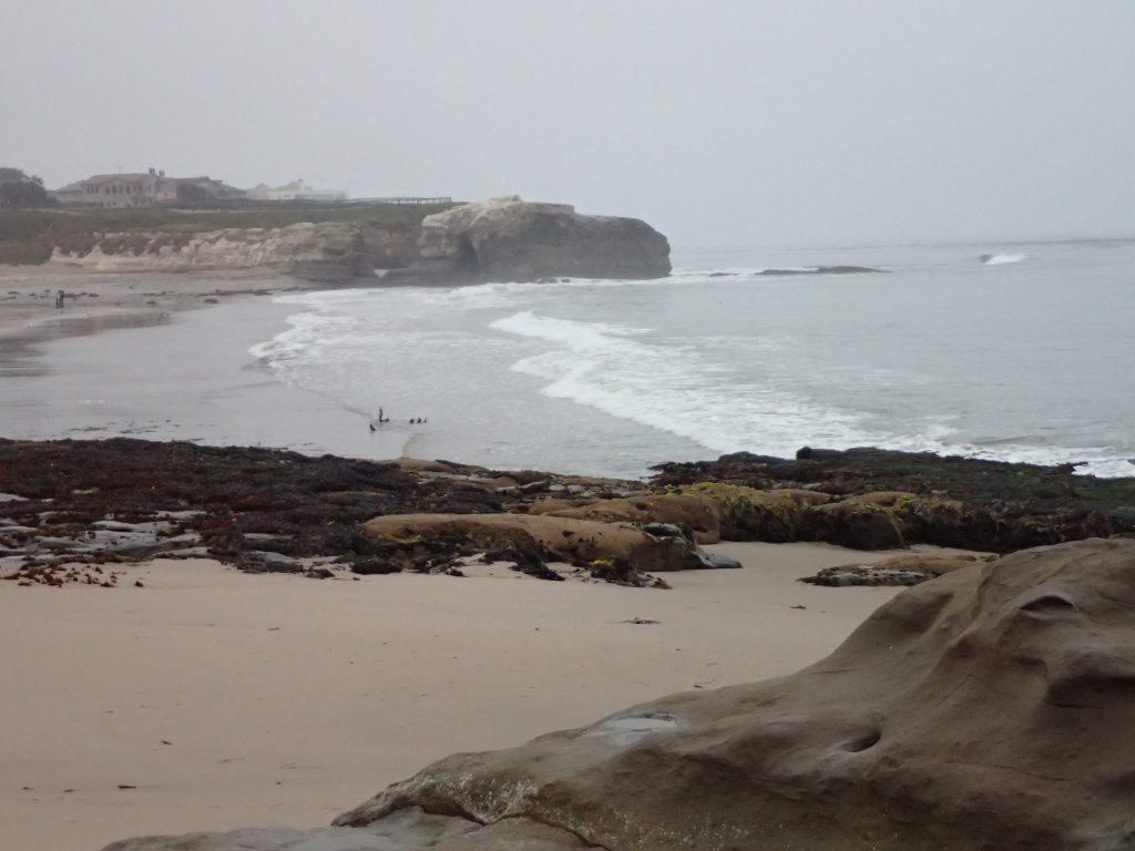 Natural Bridges State Beach 6 June 2016 © Allison J. Gong