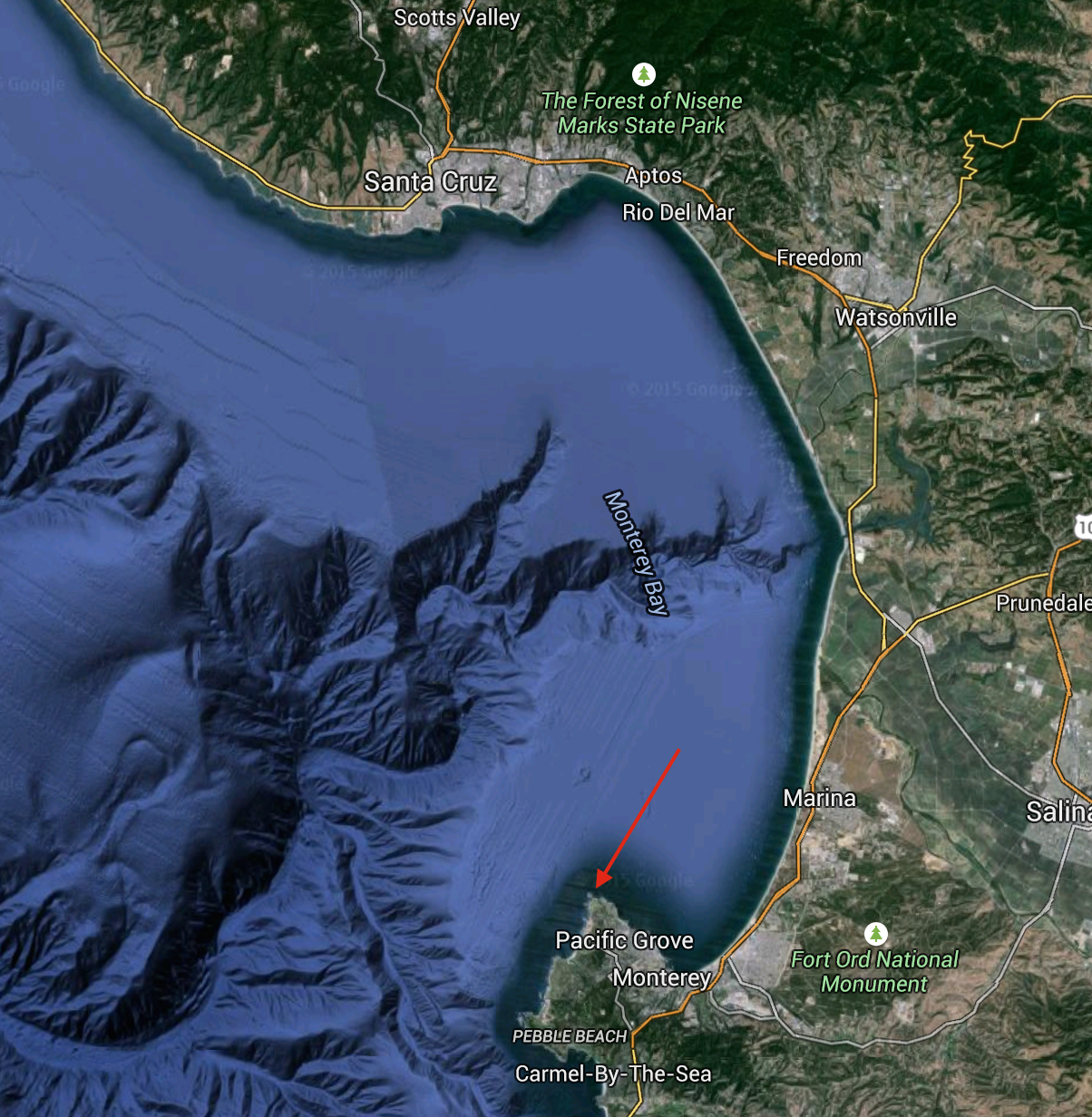 Map of Monterey Bay. Red arrow indicates Point Pinos.