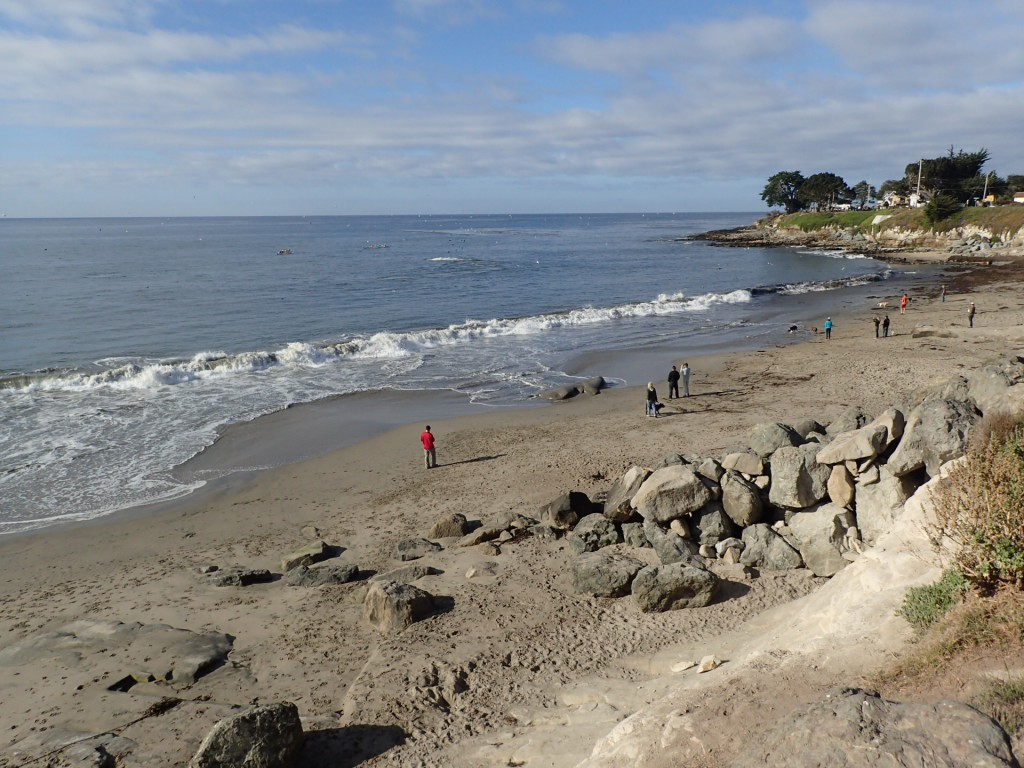 Mitchell's Cove in Santa Cruz, CA. 16 September 2015 © Allison J. Gong
