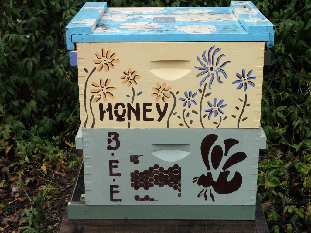 Bee hive in the Häagen-Dazs Honey Bee Haven garden at UC Davis. 16 January 2016 © Allison J. Gong