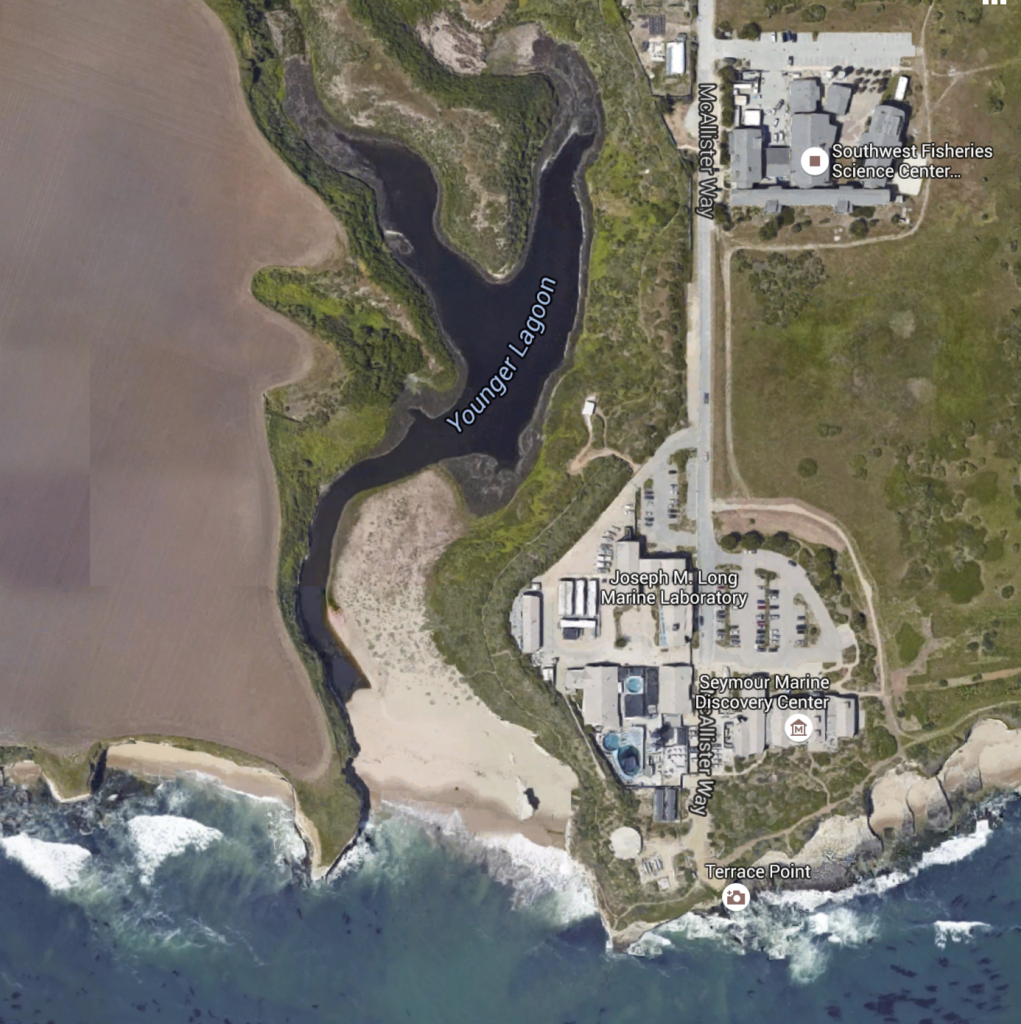 Map of UC Santa Cruz's Marine Science campus and adjacent Younger Lagoon Reserve.