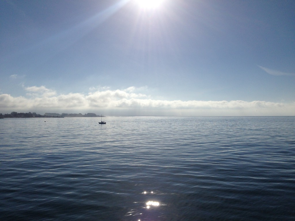 Morning on Monterey Bay. 1 April 2016 © Allison J. Gong