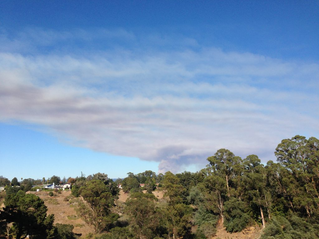 Smoke plume from the Loma Fire at 16:20. 26 September 2016 © Allison J. Gong