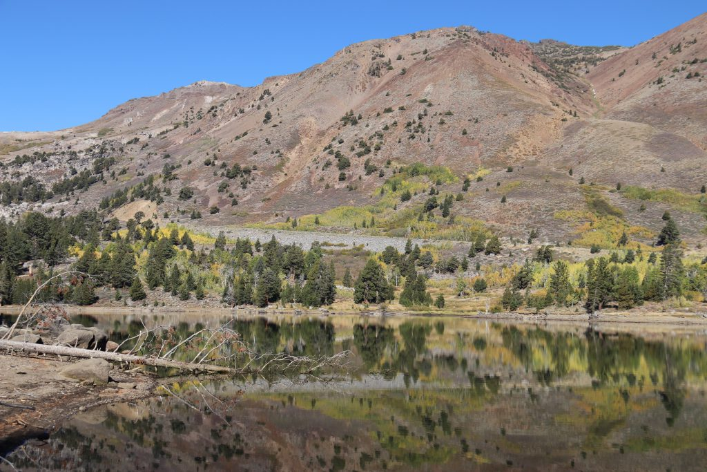 Fall colors reflected in Red Lake, near Carson Pass. 8 October 2016 © Allison J. Gong