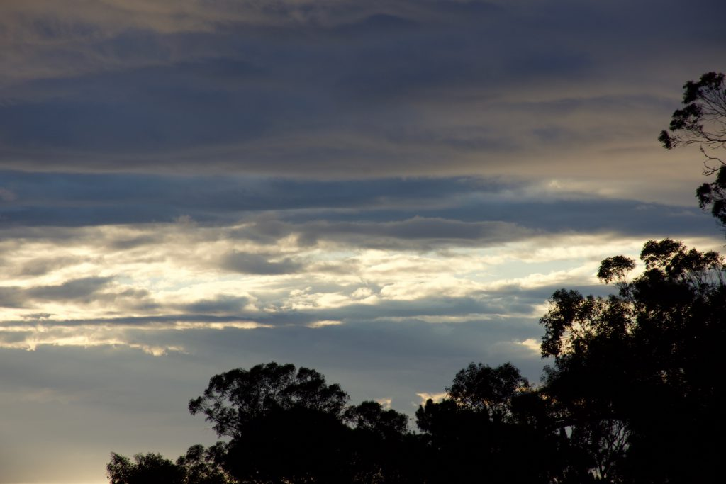 Morning sky 28 October 2016 © Allison J. Gong