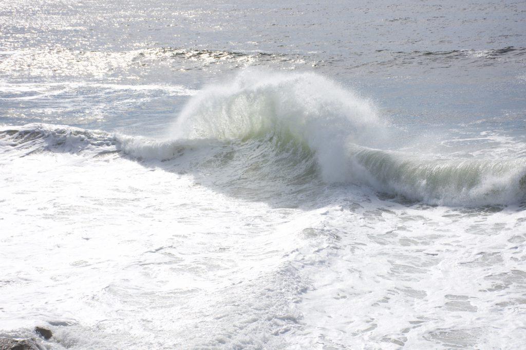 One of many large waves 31 October 2016 © Allison J. Gong